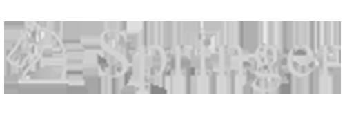 logo_springer.png